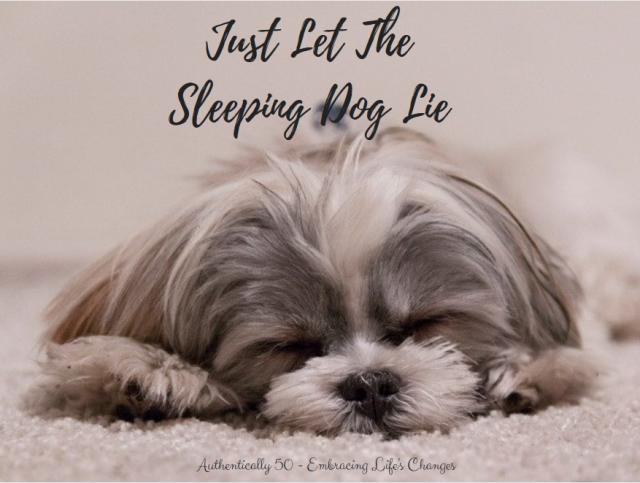 justletthesleepingdoglie
